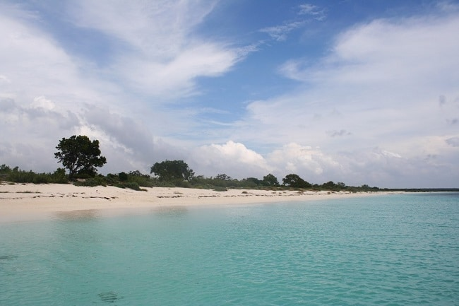 חוף De Las Aguilas