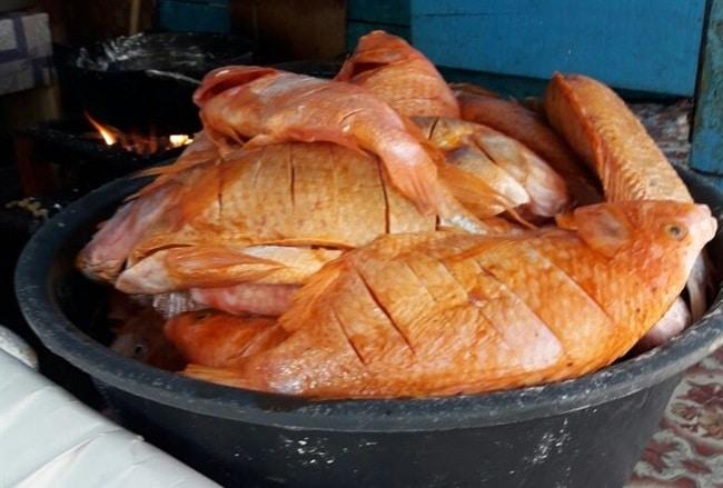 דגים מתובלים היטב - שניה לפני שהם נצלים על האש... והריח.... משגע...