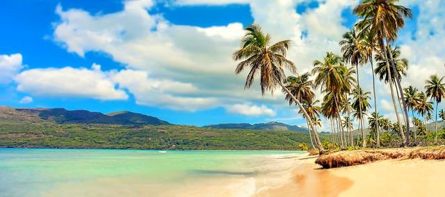 חוף טיפוסי