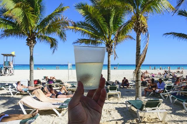 קצת שתיה בבמלון Dreams Palm Beach Punta Cana