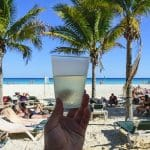 אלכס ואדווה חוגגים ירח דבש במלון Dreams Palm Beach Punta Cana