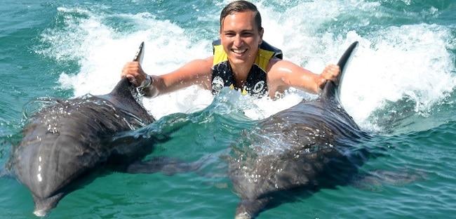 שחייה עם דולפינים